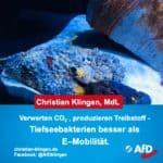 Forschung: Tiefseebakterien